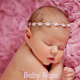 baby rose bordados paris