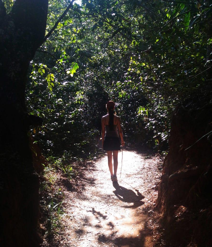 Trilha para a cachoeira Chapada diamantina no Brasil