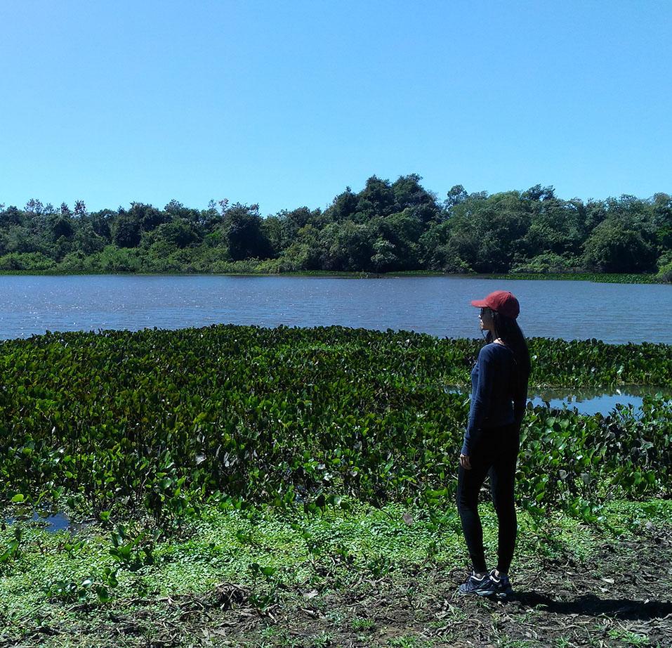 caminhada no pantanal pousada aguape