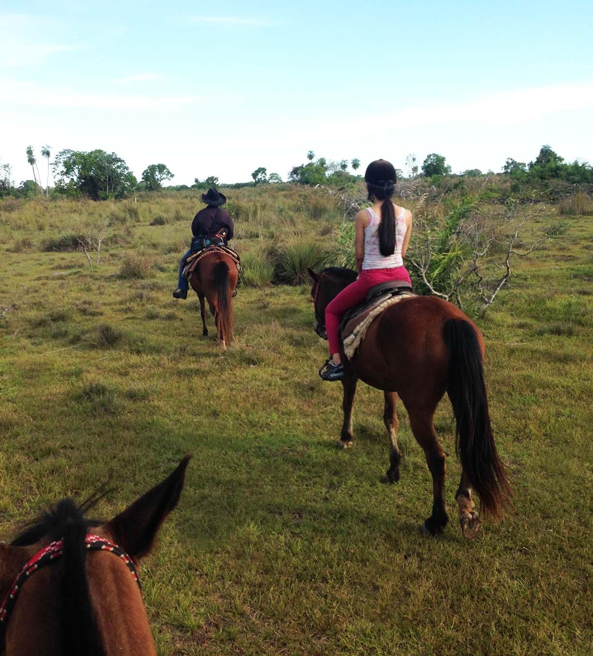 passeio a cavalo no pantanal pousada aguapé guia do estrangeiro