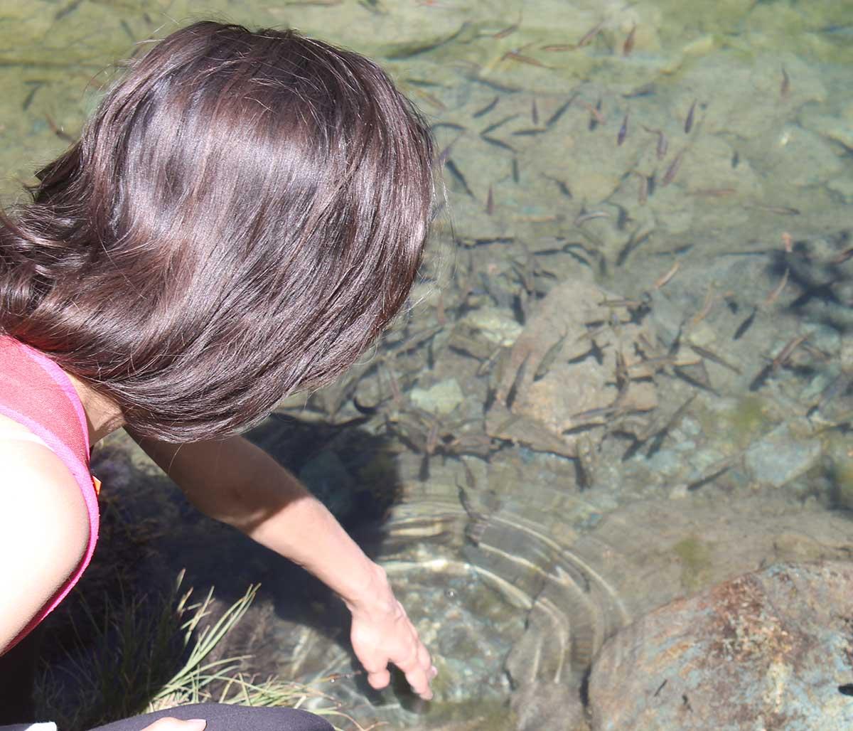 lago com peixinhos na suíça